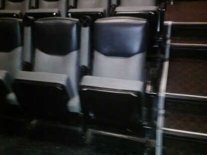 Irwin Dublin Signature used theater seating